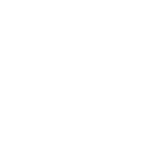 Dynamik Website Builder Tool Icon
