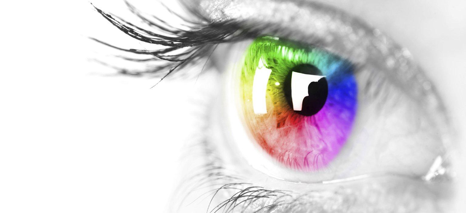 Colorful Focus